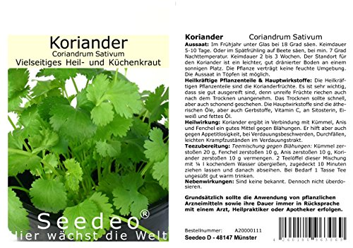 Seedeo® Thai Koriander (Coriandrum Sativum) 50 Samen Bio