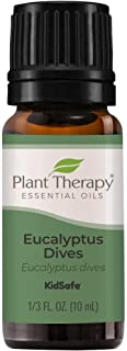 Plant Therapy Eucalyptus Dives Essential Oil 10 mL (1/3 oz) 100% Pure, Undiluted, Therapeutic Grade