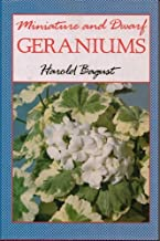 Miniature and Dwarf Geraniums/Pelargoniums