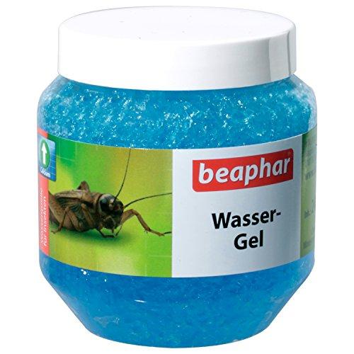 Beaphar Wasser Gel | Zur Versorgung von Spinnentieren & Futterinsekten | Mit Feuchtigkeit & Kalzium | In Gelform | Hygienisch | 3er Pack (3 x 240 g)