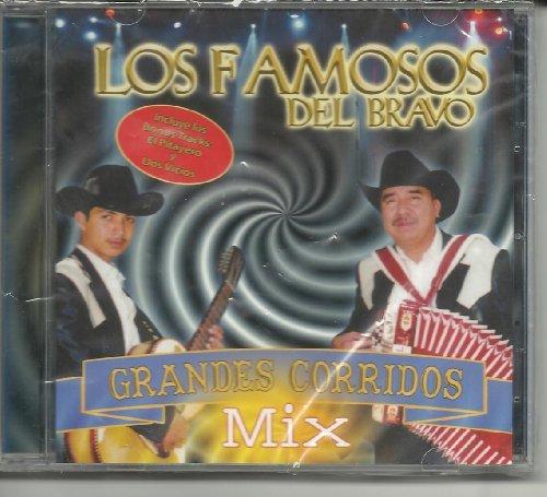 Los Famosos Del Bravo Grandes Corridos MIX
