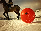 Snow Polo: Champions at the Top