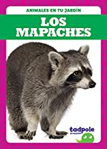 Los mapaches (Raccoons) (Tadpole Books: Spanish Edition) (Animales En Tu Jardín (Backyard Animals))