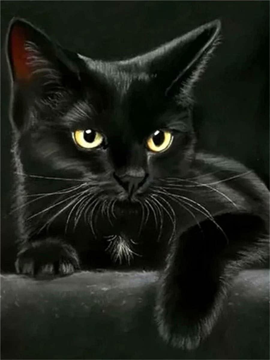 DIY Max 46% OFF Diamond Painting Hell-Class Full cat Black 2021 model
