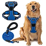 DMISOCHR No Pull Dog Harness and Leash Set - Walking Breathable Mesh Large Dog Vest Harness Soft Padded Reflective No Escape Easy Control Adjustable Doggy Harness Comfort fit Meidum Large Dogs Outdoor