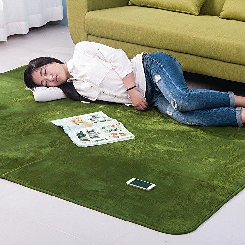 (OSJ)ラグ カーペット ラグマット 絨毯 マイクロファイバー ラグ 洗える ウォッシャブル ホットカーペット対応 フロアマット チェアマット モダンラグ 140X200cm 6色選べる (グリーン)