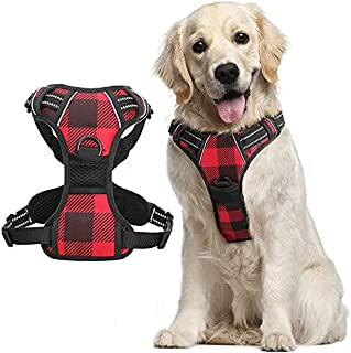 Rabbitgoo Dog Harness No Pull, Pet Harness with 2 Leash Clips, Adjustable Soft Padded Dog Vest Harnesses, Reflective No-Ch...