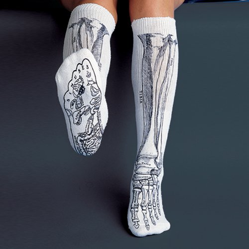 70d2f3edb Skeleton Socks  Amazon.com