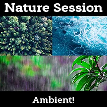 Nature Session - Ocean, Rain, Forest, Nature Sounds