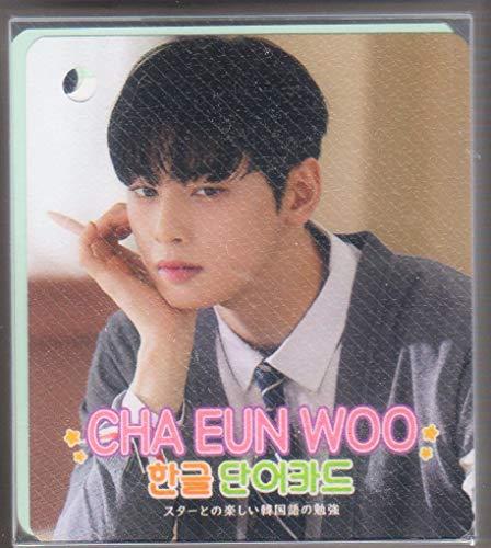 ASTRO (アストロ)チャ・ウヌ CHA EUNWOO グッズ フォト ハングル 単語カード 63枚セット(画像変更あり) 韓国 ap03
