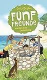 Fünf Freunde machen eine Entdeckung (Einzelbände, Band 21)