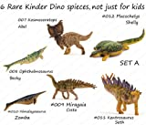 PNSO Kinder Dinosaurs 6 Figures Kids Education Set A Miragaia Kosmoceratop Model