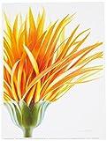 Eurographics APJ1265 Annemarie Peter-Jaumann, Orange Hair 18 x 24 cm, Hochwertiger Kunstdruck