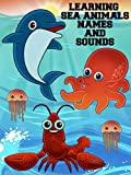 Learning Sea Animals Names And Sounds