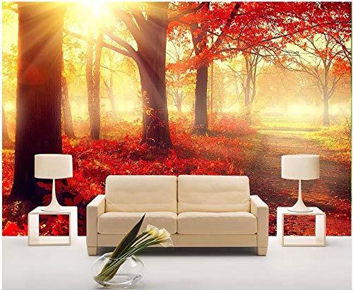 MIYCOLOR 3d foto wallpaper murale personalizzato su una parete Foglia di acero rossa raggio di sole fascio sfondo decorazioni per la casa soggiorno pareti per 3 d, 300x210 cm (118.1 by 82.7 in)