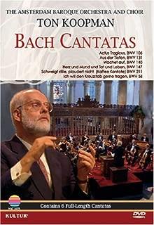 Bach Cantatas - Ton Koopman, Amsterdam Baroque Orchestra & Choir