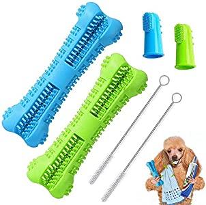 Best dog toothbrush toy