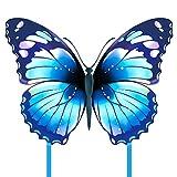 Mint's Colorful Life Mariposa dragón de dragón para niños y adultos (azul)