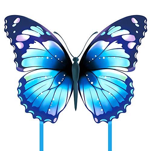Mint's Colorful Life Schmetterling Drachen flugdrachen für Kinder und Erwachsene (Blau)