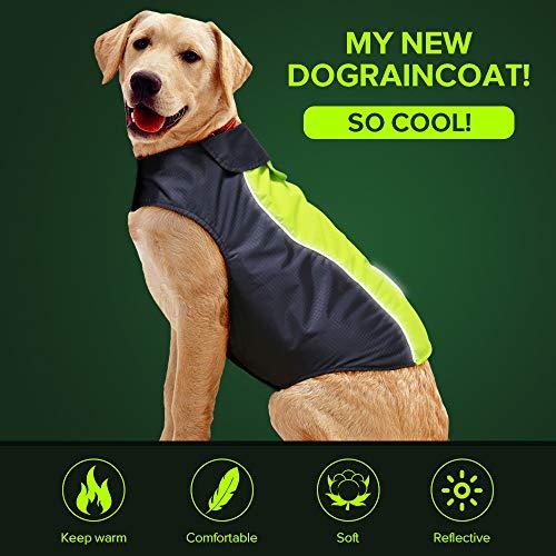 Vizbrite Hunde-Regenmantel, wasserdicht, winddicht, mit komfortablem, reflektierendem Fleece, für kleine, mittelgroße und große Hunde (XXL, grün)