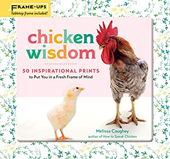 Chicken Wisdom Frame-Ups  50 Inspirational Prints to Put You in a Fresh Frame of Mind