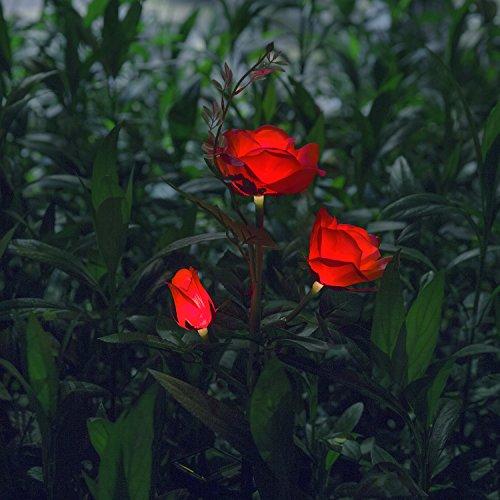 Beleuchtung Außen Solarleuchte Garten, Solar Garten Lampen mit LED Rose Lichter, Dekoration Lichter für den Garten Rasen Terrasse Feld Weg, Rot