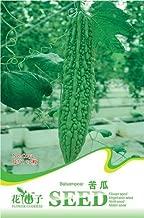 Business sasha Each Pack 10+ Seeds Heirloom Organic Vegetable Balsam Pear Bitter Melon Seeds