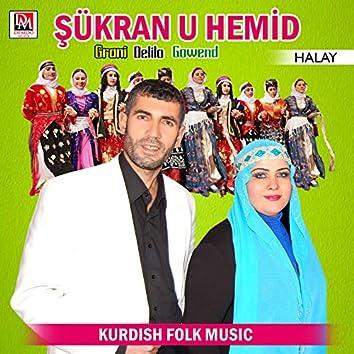Grani Delilo Gowend / Halay (Kurdish Folk Music)
