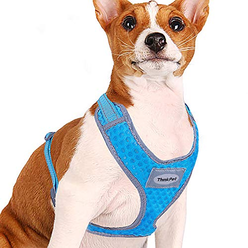 ThinkPet Reflective Breathable Soft Air Mesh No Pull Puppy Choke Free Over Head Vest Ventilation Harness for Puppy Small Medium Dogs and Cats Neon Blue Neck 9-15 in/Chest 13-20 in