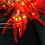 Red Chili Pepper String Lights Fairy Night Lights Copper Garland Wreath Hanging Lamp Plug in for Home Wedding Party Garden Decoration (9.8FT/20LED, Red Chili)