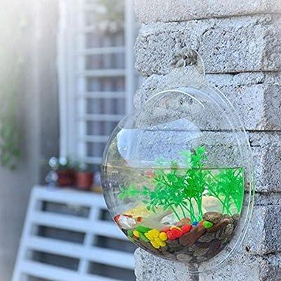 Behältervase Montieren, CONMING an der Wand befestigte Fisch-Behälter-Luftblasen-Schüssel-hängende Blumen-Topf-Pflanze Vase Aquarium-Ausgangsdekoration (Transparent)
