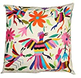 Del Mex Hand Embroidered Otomi Throw Pillow Cover 18' by 18' Mexican (Multi-Color B)