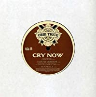Cry Now [12 inch Analog]