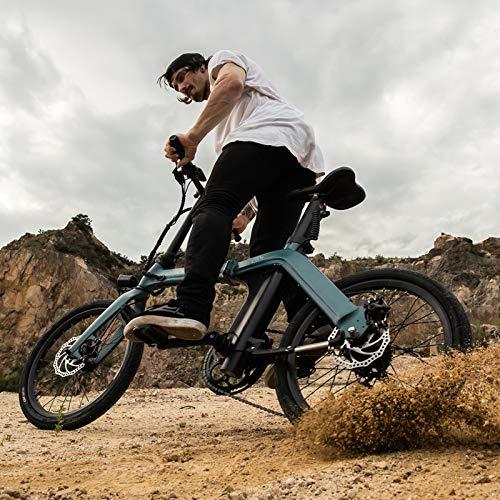 FIIDO D11 Bici elettrica Pieghevole 250W Motore 7 velocità deragliatore Display 3 modalità ultra-leggero E-Bike Bicicletta elettrica per Adulti Adolescenti 36V 11,6 Ah 30 km h