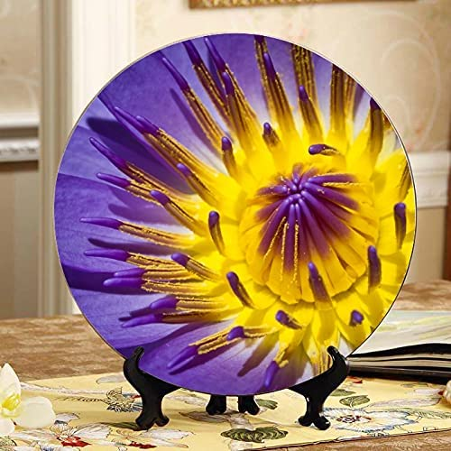 ALALAL Water Lilies in Ponds Dinner Dis 5% OFF Plate Plates Long Beach Mall Decorations