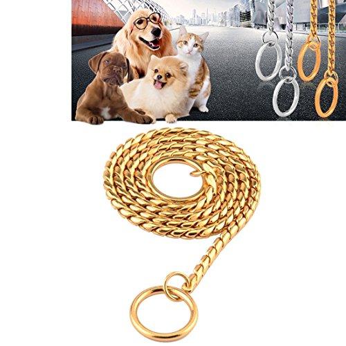 jdon-huisdier, huisdier halsbanden huisdier halsband hond halsband slang ketting hond ketting massief metalen ketting hond kraag, lengte: 50 cm, Goud