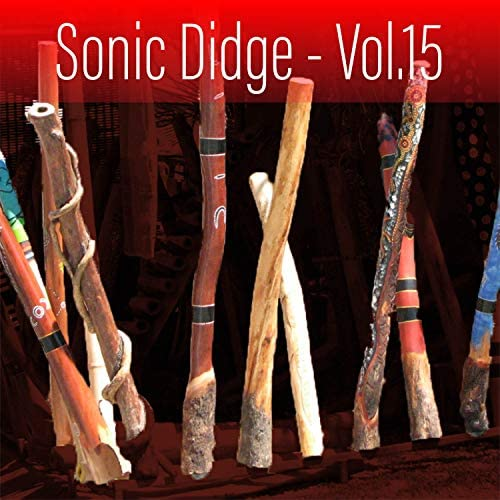 Sonic World Orchestra & David Hudson