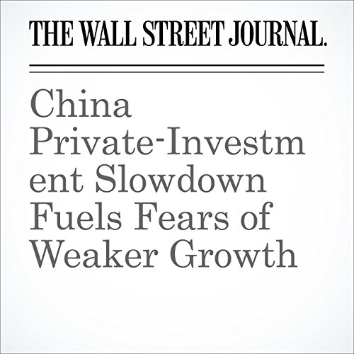 China Private-Investment Slowdown Fuels Fears of Weaker Growth cover art