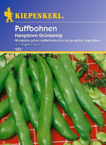 Puffbohnen Hangdown Grün