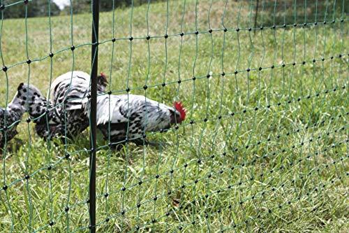 Kerbl - Rete per pollame di Colore Verde (può Essere collegata per Diventare elettrificata).