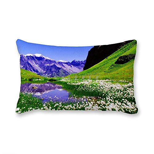 happygoluck1y Spring Nature Mountain View - Fundas de cojín rectangulares (30 x 50 cm), diseño de lunares, color blanco y negro