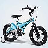 Triciclo Bebé Trolley Trike Conveniente bicicleta for niños, 14/16 pulgadas Cochecito de bebé 3-6 años de edad Bicicleta de montaña Bicicleta Bicicleta Bicicleta Bicicleta cómoda (Color: Azul, Tamaño: