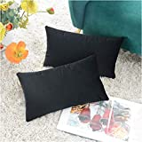 COMFORTLAND 2 Pack Decorative Throw Pillow Covers, Lumbar Soft Luxury Velvet Cushion Shams