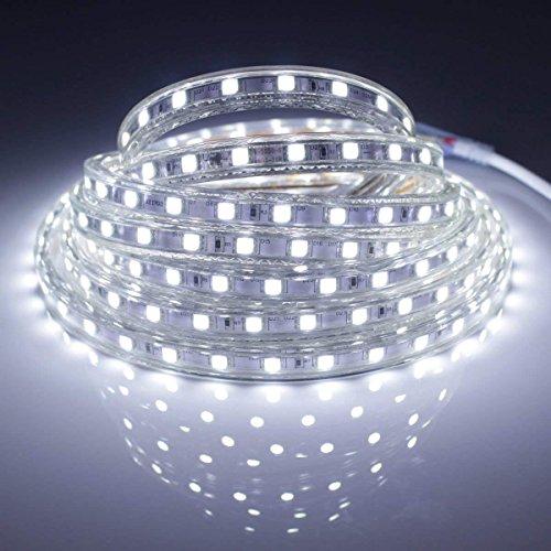 Ruban à LED avec Prise 220V 5050 étanche IP65 flexible sécable 60pcs LED/chaque mètre (Blanc froid, 1 mètre)