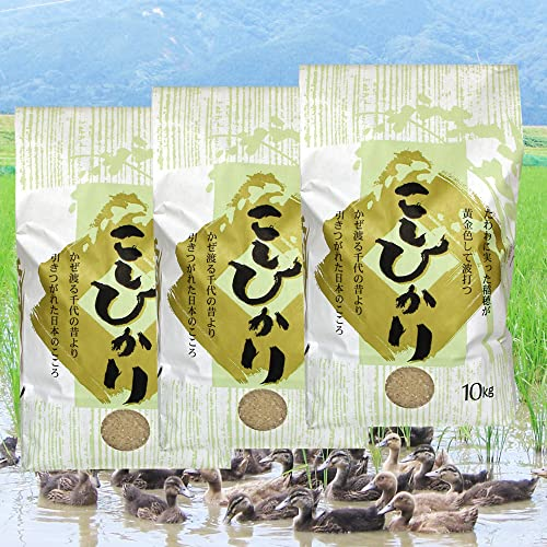 【お取り寄せグルメ】無農薬米コシヒカリ 玄米 30kg(10kg×3袋)/アイガモ農法で育てた安心・安全の新潟米