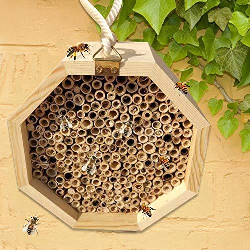 Fanlary Insektenhaus Insektenhotel Bienenhaus wildbienen, Bienenhaus Bausatz Bienenzucht Nistkasten für den Garten Popular