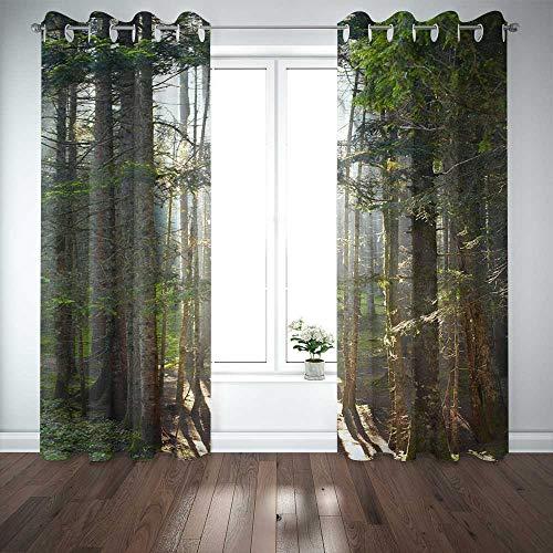 Musesh Cortinas de 132 x 63 pulgadas, 2 paneles, cortinas opacas, paneles de ventana, panel de ventana para recámara, sala de estar