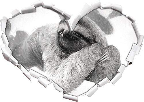 KAIASH 3D Pegatinas de Pared Hermoso Perezoso cuelga de la Rama de Arte con Efecto de carbón en Forma de corazón en Apariencia 3D Pegatinas de Pared calcomanía de la Pared decoración 62x43cm