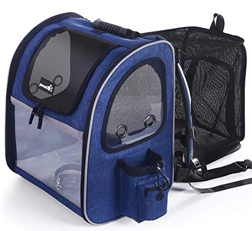 Pecute Pet Carrier Backpack Expandable,Portable Breathable Rucksack with Mesh Opening-Visible Acrylic-Safety Belt-Pockets, Extendable Back More Space Great For Carrying Puppy Cats(Blue,Plastic Window)