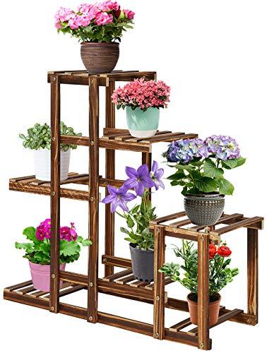scala per piante online